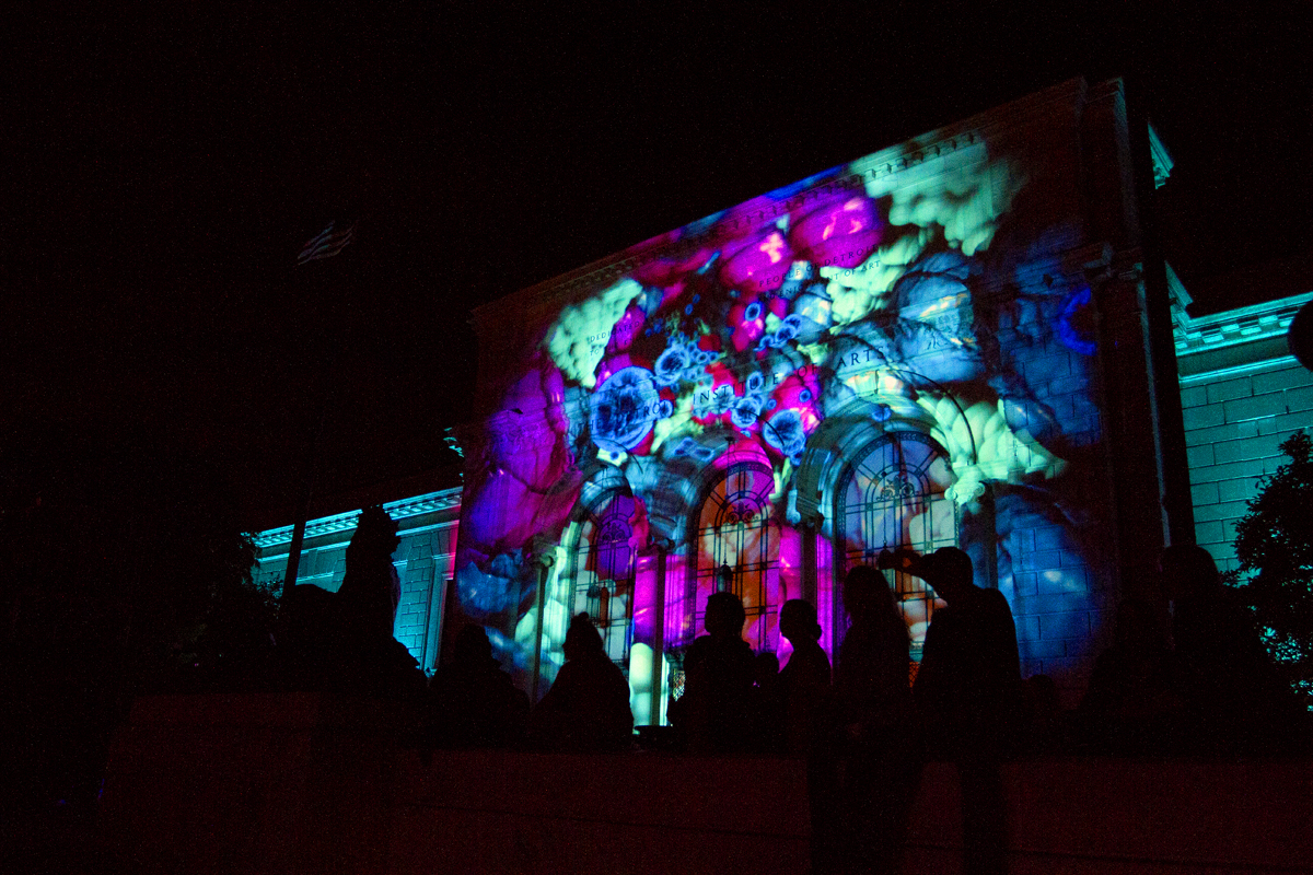 Dlectricity_0135