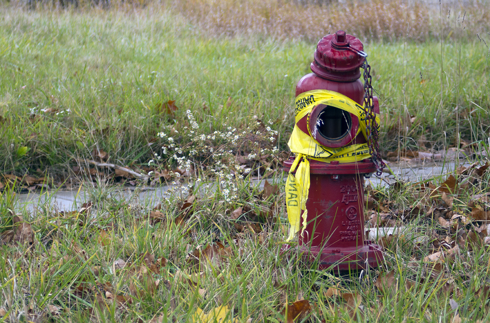 fire hydrant_8035
