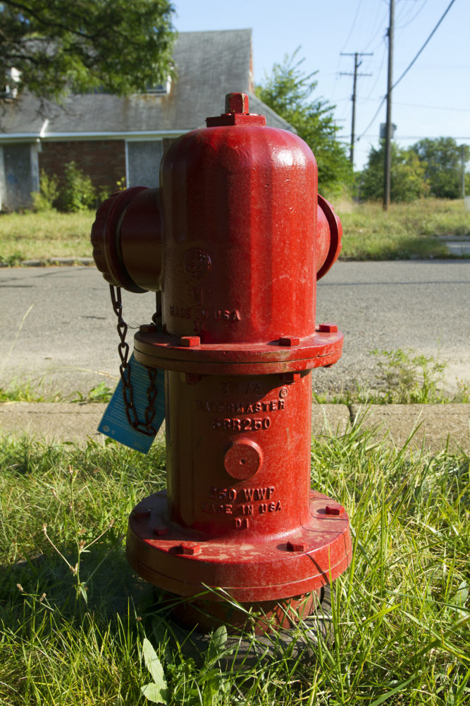 A new hydrant installed this year didn't work.