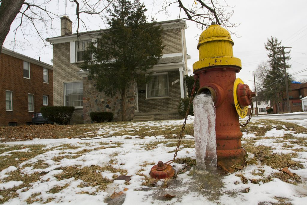 A frozen hydrant outside of an occupied Detroit home. By Steve Neavling.