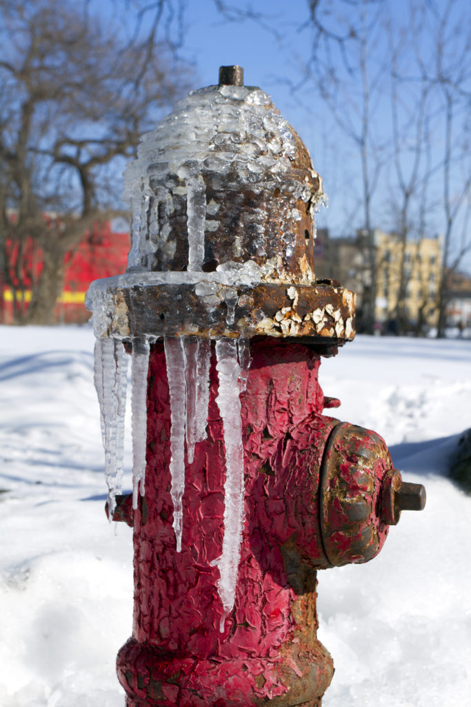 Ice accumulates on the outside of a hydrant. Photo by Steve Neavling.