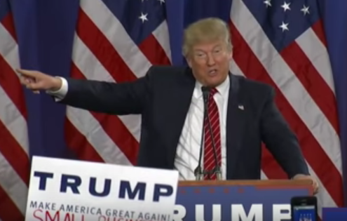 Trump makes unconstitutional case for arresting protester at Michigan rally