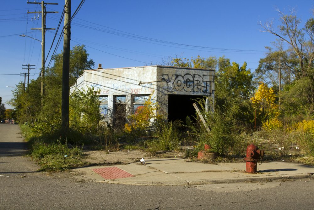 A sidewalk to nowhere on Detroit's east side. Photo by Steve Neavling.